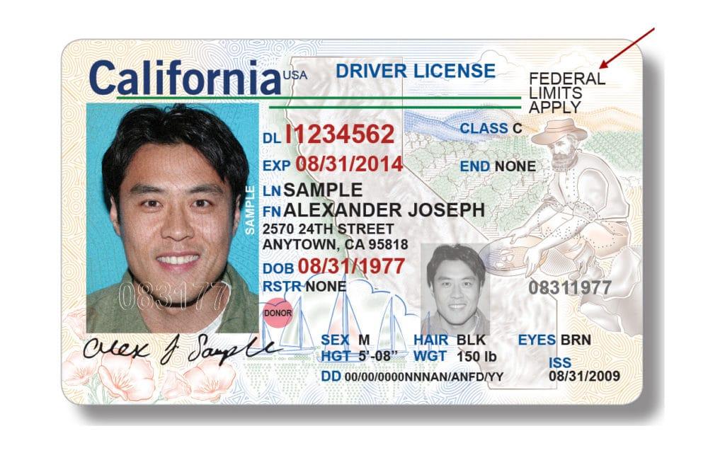 California Drivers License 1024x657