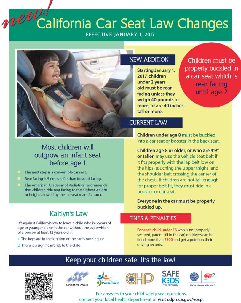 Carseat Awareness Infographic 813x1024