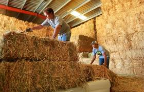 How much does a bale of hay cost in California